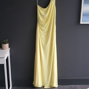 Stunning Soft Yellow Long Dress